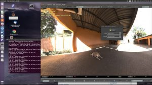 mrViewer 5 Crack+Activation Key Full Version Free Download